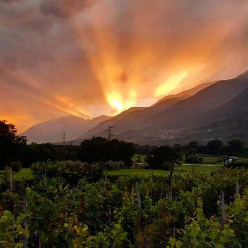 Tramonto in Valtellina
